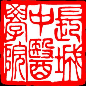 LOGO GREAT WALL CHINA